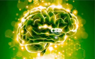 Beneficios de Cbd 1024x633 1020x631