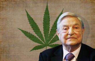 Monsanto Soros Marihuana