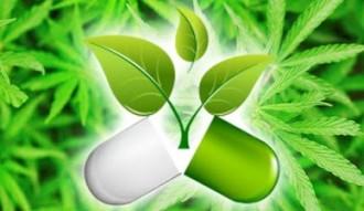 Legalizace Marihuana