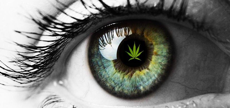 CBD Göz