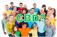 CBD Oil And Why It Wont Work For Everyone