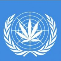 The World Organization Hemp