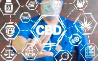 Can You Build A Cbd Tolerance