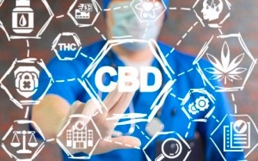 Can you build a CBD tolerance?