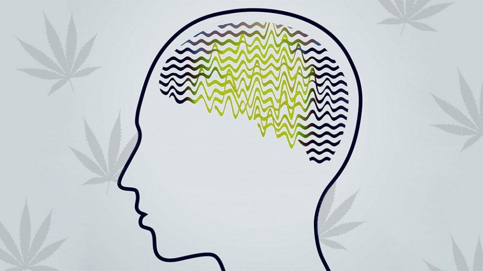Le chanvre dans le traitement de l'épilepsie