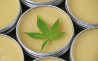 Hemp Ointment And Its Effects