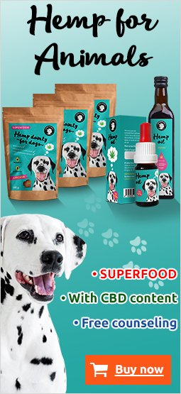Right Banner Dog 249x395 EN